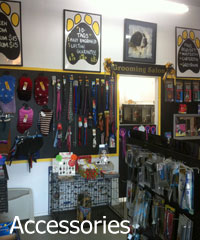 We stock a wide range of pet accessories